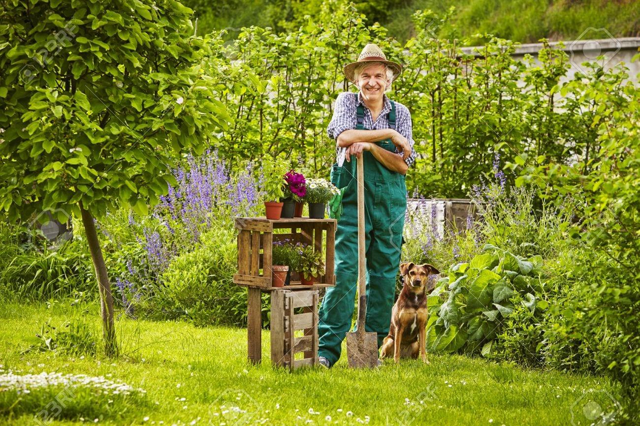 Trouver Un Jardinier A Domicile comment devenir jardinier - bossecheztoi